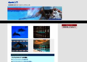 swimterm.com