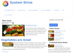 system-drive.com