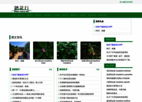 tahua.net