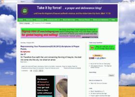 takingitbyfirebyforce.blogspot.com