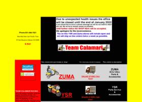 teamcalamari.com