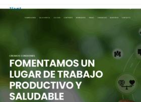 teams.com.mx