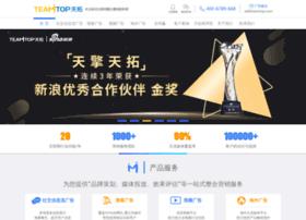 teamtop.com.cn