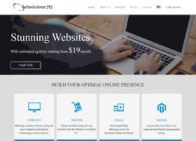 techsolutions247.com