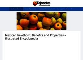 tejocotes.com
