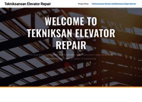 tekniksanasansor.com