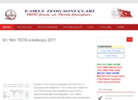 teogsonuclari.net