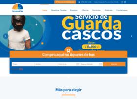 terminaldelsur.com