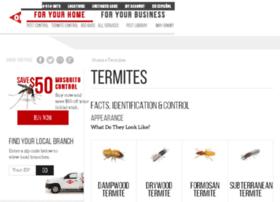termites101.org