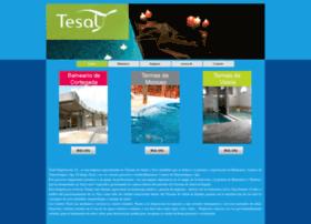 tesal.com