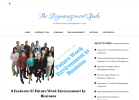 thebizmanagementguide.com