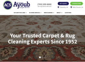 thecarpetandrugpeople.com