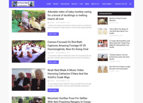 thediscoverreality.com