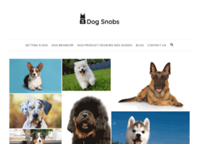 thedogsnobs.com