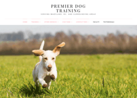 thedogtrainingpro.com