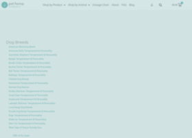 thefightins.com
