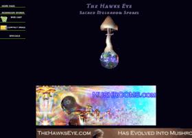 thehawkseye.com