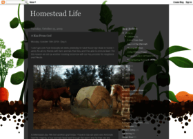 thehomesteadlife.blogspot.co.uk
