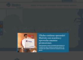 thelsa.com