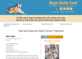 themagicbulletfund.org