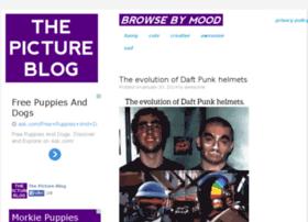 thepictureblog.com