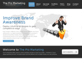 thepromarketing.com