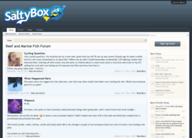 thesaltybox.com