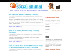 thesocialanimal.com