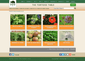 thetortoisetable.org.uk