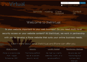 thevirtual.co.nz