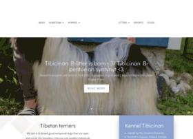 tibicinan.com