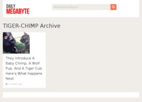 tiger-chimp.dailymegabyte.com