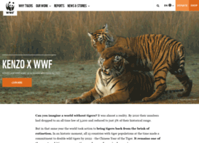 tigers.panda.org