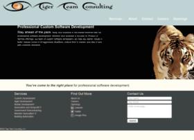 tigerteamconsulting.com