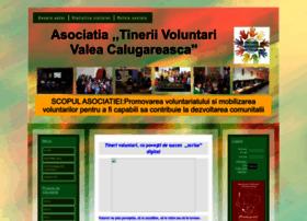 tineriivoluntari.wgz.ro