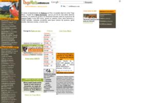 tingomaria.webhuanuco.com