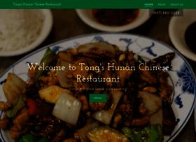 tongshunan.com