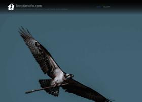 tonyumana.com