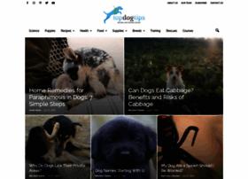topdogtips.com