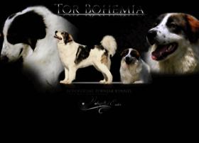 torbohemia.com