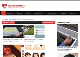 torontomesh.com