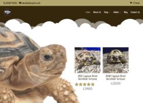 Tortoisecentre.co.uk