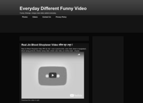 total-funnyvideo.blogspot.ch