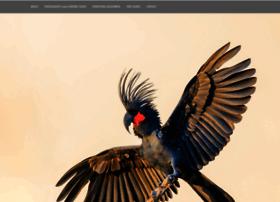 tracksbirding.com.au