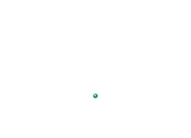 travelmartindia.com