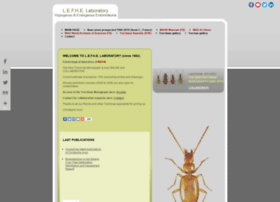 trechinae.org