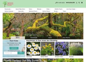 trees-plants.com
