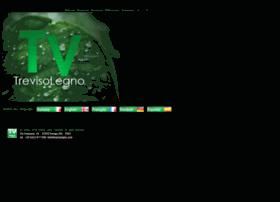 trevisolegno.com