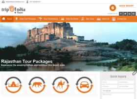 trip2indiatours.com