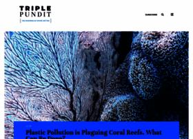triplepundit.com